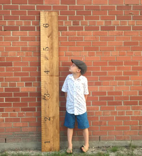 Growth Chart 1
